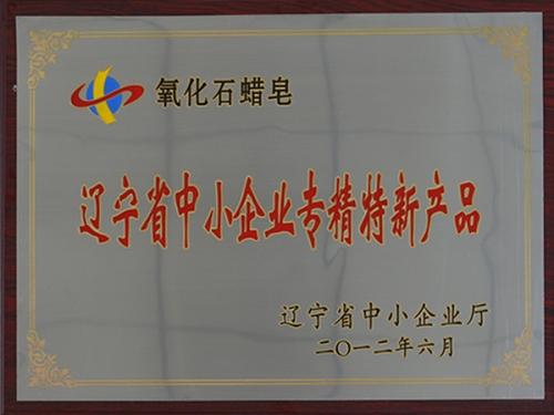 辽宁省中小企业专精特新产品